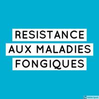 Résistance maladies fongiques axes recherche