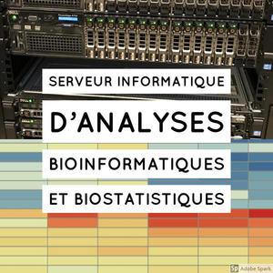 SVQV - BioInfo(1)